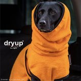 Dryup Cape Clementine_