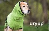 Dryup Cape Kiwi_
