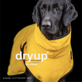 Dryup Cape Yellow_