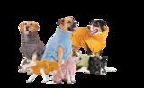Lill's badjas / drying coat / bademantel