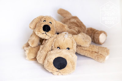 Knuffelhond