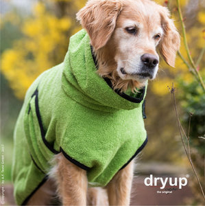 Dryup Cape Kiwi